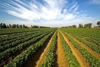 Оцінка земельної ділянки. Оцінювач землі (2)
