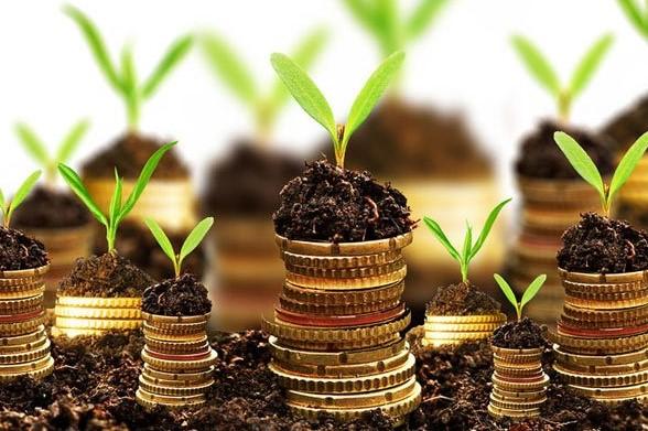 Ринок землі в Україні в 2019 році – прогноз експерта