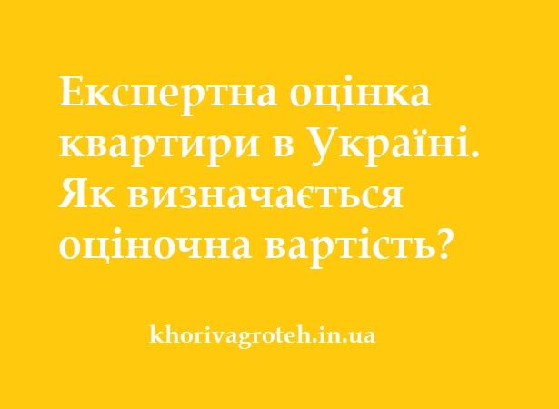 Експертна оцінка квартири в Україні. Як визначається оціночна вартість