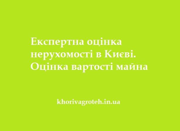 Експертна оцінка нерухомості в Києві. Оцінка вартості майна